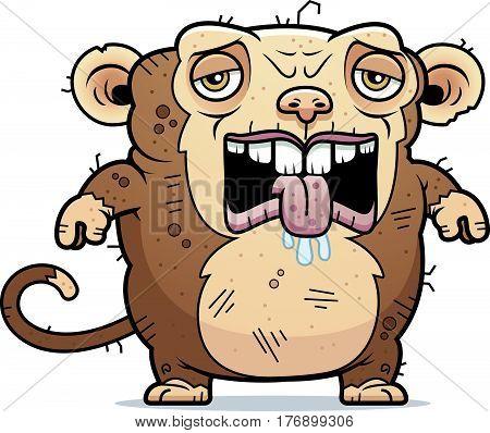 Tired Ugly Monkey