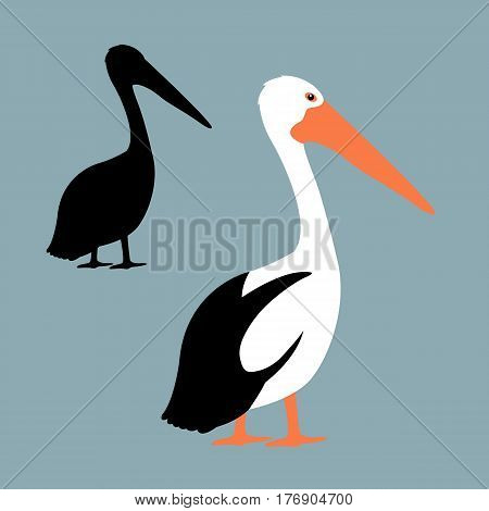 Pelican vector illustration style  Flat set silhouette black