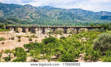 Citrus Garden And Bridge In Alcantara River Valley