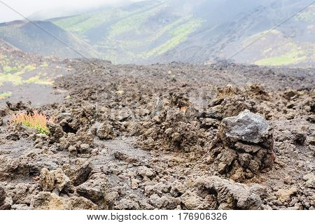 Hardened Lava Close Up On Lava Field On Mount Etna