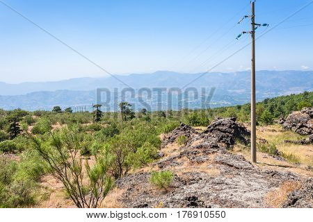 Overgrown Slope And Old Hardened Lava Of Etna