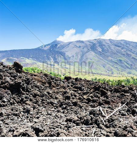 View Of Petrified Lava On Slope Of Etna Volcano