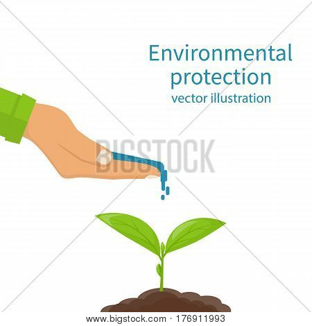 Environmental protection concept. Watering, fertilizer young sapling falling drop of water isolated. Plant sprout. Water in hand of man. Vector illustration flat design. Isolated on white background.