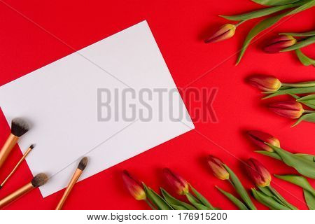 Beauty background. Make up brushes on white blank paper and spring flowers tulips on red background. Top view. Flat lay