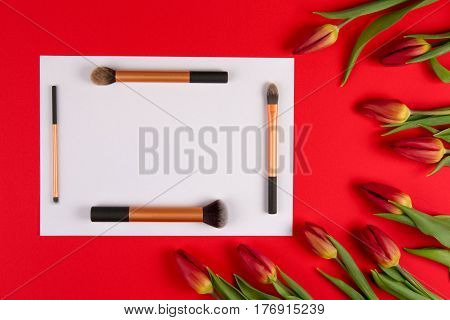 Make up brushes arranged on white blank paper and spring flowers tulips on red background. Top view. Flat lay. Copy space for text