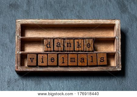 Danke vielmals. Thank you very much or great thanks in German translation. Vintage box, wooden cubes phrase written with old style letters. Gray stone textured background. Close-up, soft focus