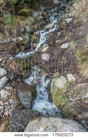 A stream at Lincoln Park in West Seattle rushes down a hill.