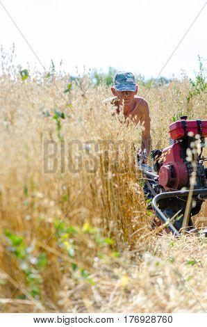 Farmer harvesting with a rotary braid manually on a farm