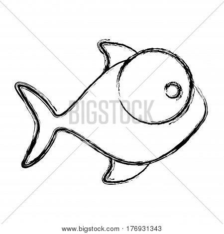 blurred silhouette fish aquatic animal icon vector illustration