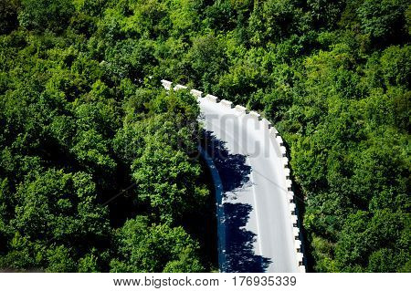 Photo Of The Cool Road Surrounded By Green Trees On The Nature Background
