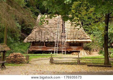 beautiful view of village house in the state of building on the wonderful trees background