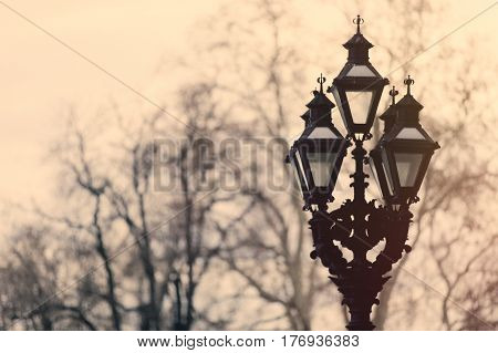 beautiful view on vintage lamp post on the trees background