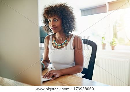 Young African American Woman Working At A Computer