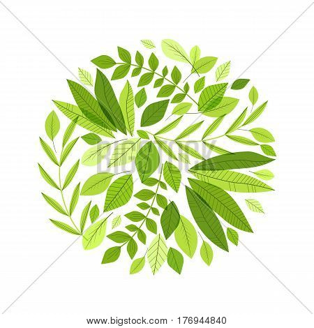 Vector illustration of decoration branches with leaves, nature background