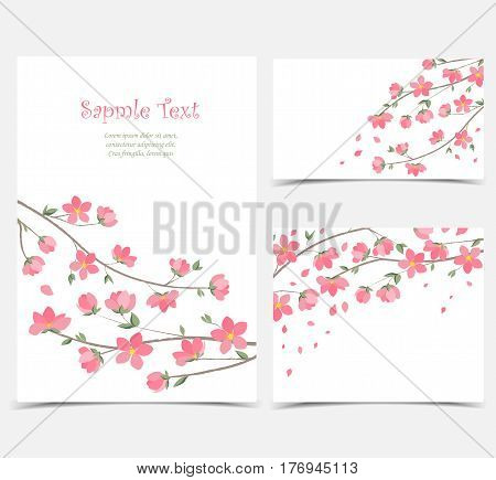 Vector decoration branches with flowers, spring blossom Sakura, Set of greeting cards