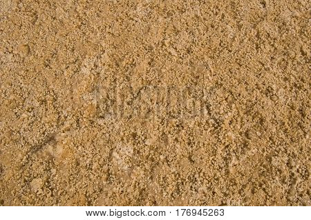 Ground with salt in Sahara (close up)