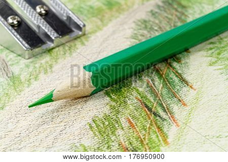 Green pencil and sharpener on the background of the picture