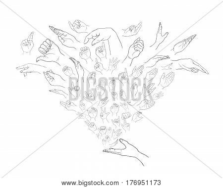 Sketch of Various Hand Signs in An Open Hand Isolated on White Background..