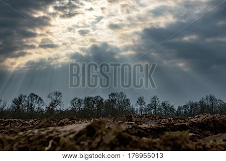 Sunrays shining through cloud cover on farmland