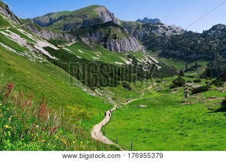 Hiking in the mountains. Austria travel Achensee Area Tirol