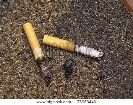 smoked cigarettes butts cast in the sand