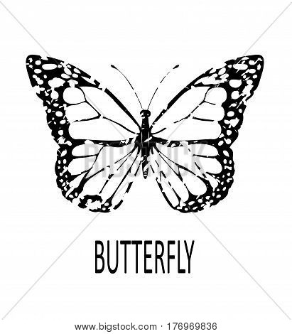 vector illustration of a grunge butterfly icon