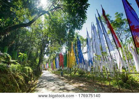 Beautiful way to Samdruptse statue sun light and shadow of tree on the road and flags waving on the other side of road . Samdruptse is a huge buddhist memorial statue in Sikkim India.