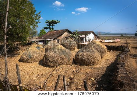 Typical hayloft in India. Haystack and farmer's house. The life of the poor people in villages in India.