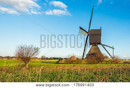 Dutch polder landscape with a historic wooden hollow post mill as seen from the side. In the foreground are a willow tree and overblown sunflowers.