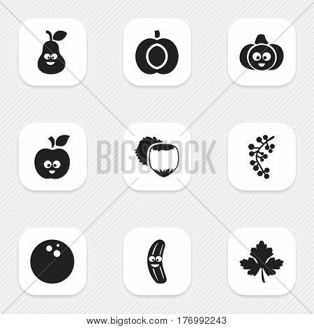 Set Of 9 Editable Cooking Icons. Includes Symbols Such As Pear, Nectarine, Leaf And More. Can Be Used For Web, Mobile, UI And Infographic Design.