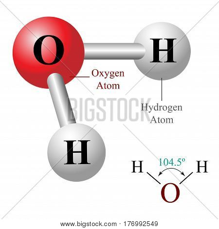 H2O, water molecule illustration. Isolated on white