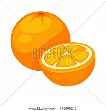Orange tropical fruit whole and half isolated on white background. Nutrition dieting dessert, rich on vitamins C. Tasty ripe citrus sweet fruits realistic vector illustration in flat style design