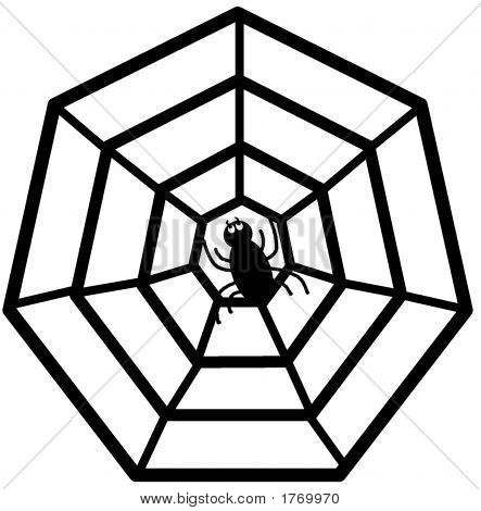 Spider In Web