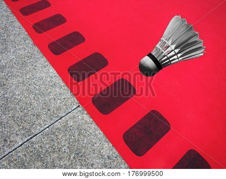 Goose feather badminton shuttlecock and red red carpet