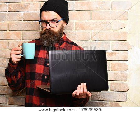 Bearded man long beard. Brutal caucasian serious unshaven hipster holding laptop with mag or cup in red black checkered shirt with hat and glasses on brown brick wall studio background