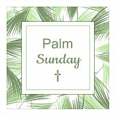 Palm Sunday banner as religious holidays background in vector format poster