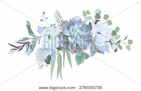 Dusty Blue Echeveria Succulent, White Ranunculus, Anemone, Eucalyptus, Silver Greenery Vector Design