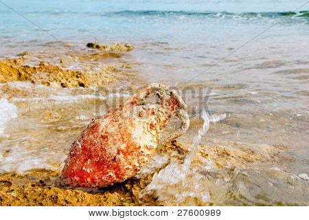 Amphora roman clay pottery with marine fouling in Mediterranean rock beach