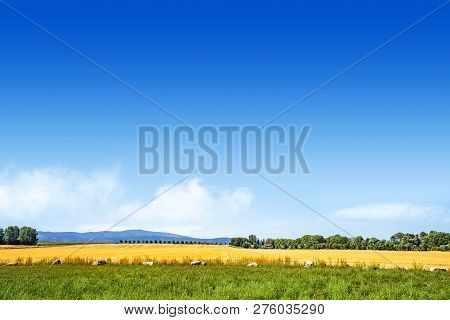 Colorful Summer Landscape With Golden Fields Under A Blue Sky With Mountains In The Background