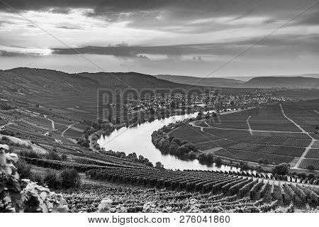 Famous Moselle Sinuosity In Trittenheim In Germany
