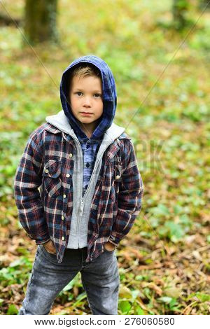 Early Fall. Small Boy In Fall. Small Child In Casual Outfit Outdoor. Adorable Boy In Hoodie, Fall Fa
