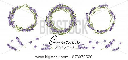 Set Of Cute Lavender Wreaths. Provence Style Floral Design. Vector Lavender Flowers Isolated On Whit