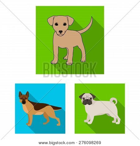 Vector Design Of Animal And Habitat Symbol. Collection Of Animal And Farm Stock Symbol For Web.