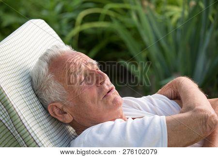 Elderly Man Resting On Bench In Garden In Summer Time