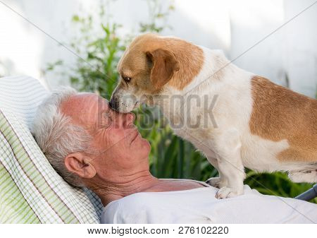Old Man With Dog In Garden