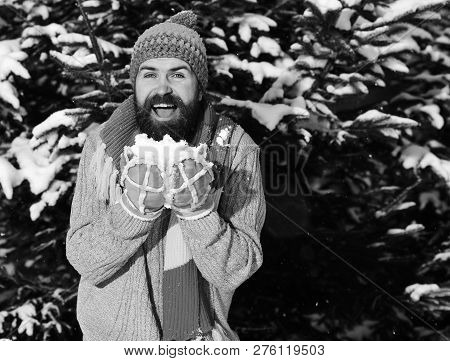 Man Wears Knitted Hat, Scarf And Gloves. Guy With Happy Face With Firtrees Covered With Snow On Back