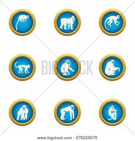 Tamarin Icons Set. Flat Set Of 9 Tamarin Icons For Web Isolated On White Background