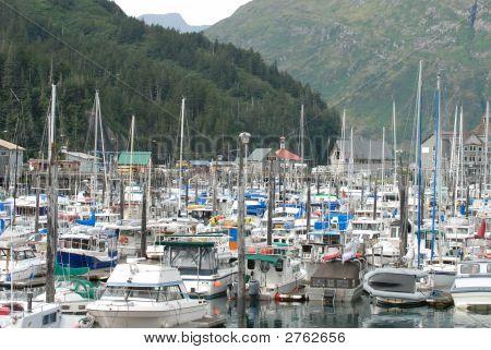 Fishing Boats and Sail Boats