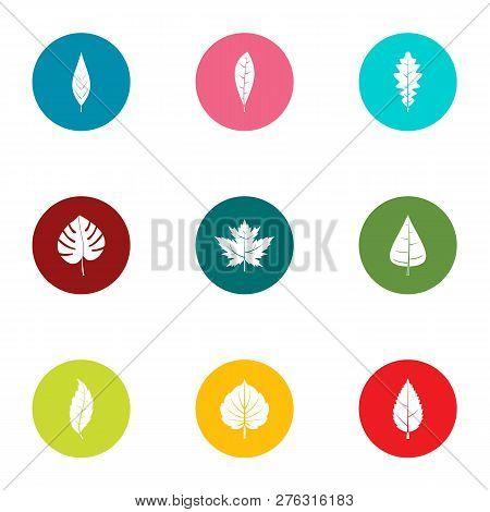 Foliage Icons Set. Flat Set Of 9 Foliage Icons For Web Isolated On White Background