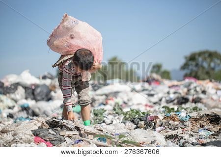 Children Are Junk To Keep Going To Sell Because Of Poverty, World Environment Day, Child Labor,  Hum
